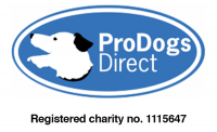 Dog Rescue, Adoption & Fostering in London, Kent, Hampshire | Pro Dogs Direct